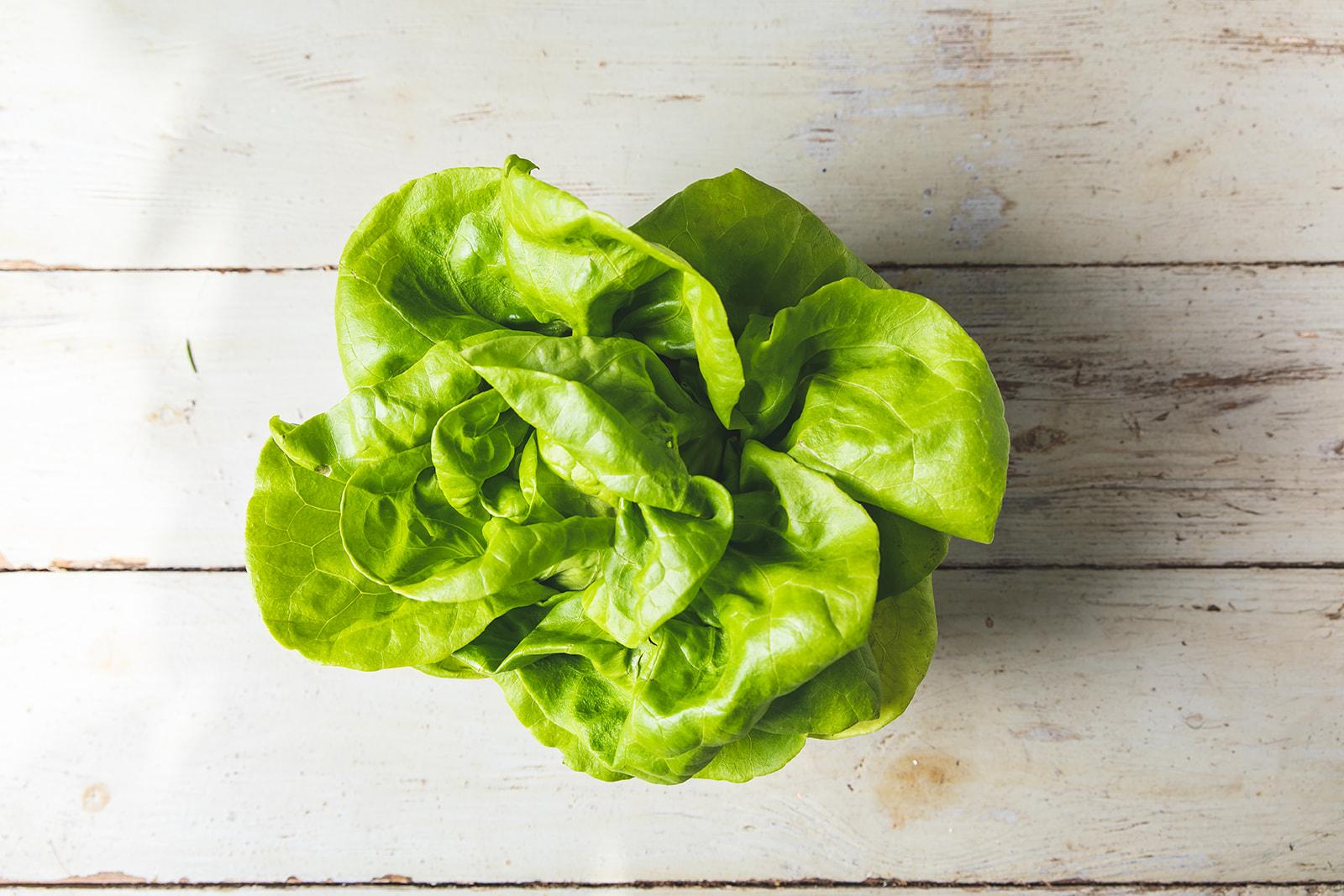 Alon Green Lettuce